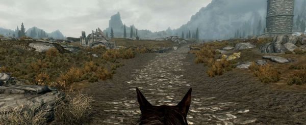 Skyrim - Enhanced Camera skyrim mod